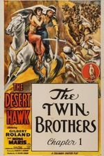 The Desert Hawk