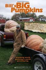 Bill's Big Pumpkins