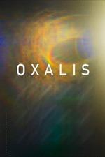 Oxalis