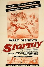 Stormy, the Thoroughbred