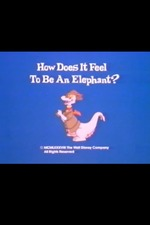 How Does It Feel to Be an Elephant?