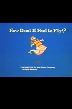 How Does It Feel to Fly?