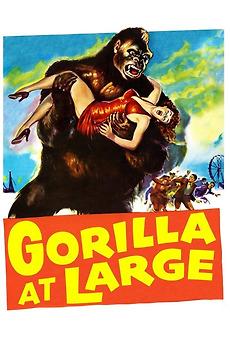 57170-gorilla-at-large-0-230-0-345-crop.