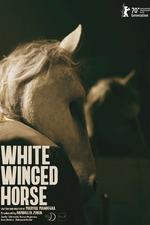 White Winged Horse