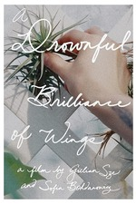 A Drownful Brilliance of Wings