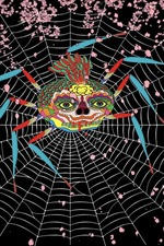 The Laughing Spider