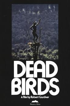 Dead Birds Film