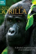 BBC Mountain Gorilla