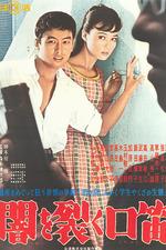 Yami wo saku kuchibue