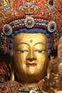 Tibet: 10 Years