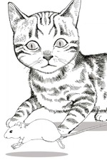 Animal World: Cat and Mouse Struggle