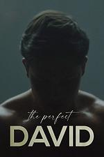 The Perfect David