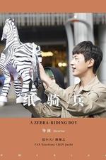 A Zebra-Riding Boy