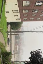 Tsukamoto's Haze