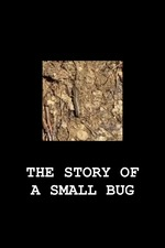 THE STORY OF A SMALL BUG