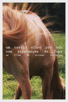 A horse looked at the sky with hope of escape