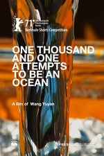 One Thousand and One Attempts to Be an Ocean
