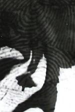 A Rough History (of the destruction of fingerprints)