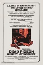 Dead Pigeon on Beethoven Street