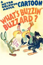 What's Buzzin' Buzzard?
