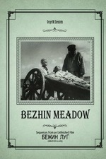 Bezhin Meadow: Sequences from an Unfinished Film