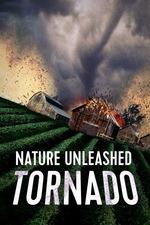 Nature Unleashed: Tornado