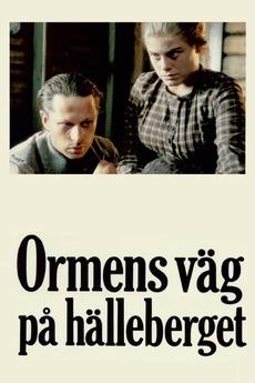Film om widerberg pa festival