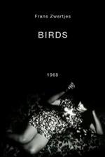 Birds, One