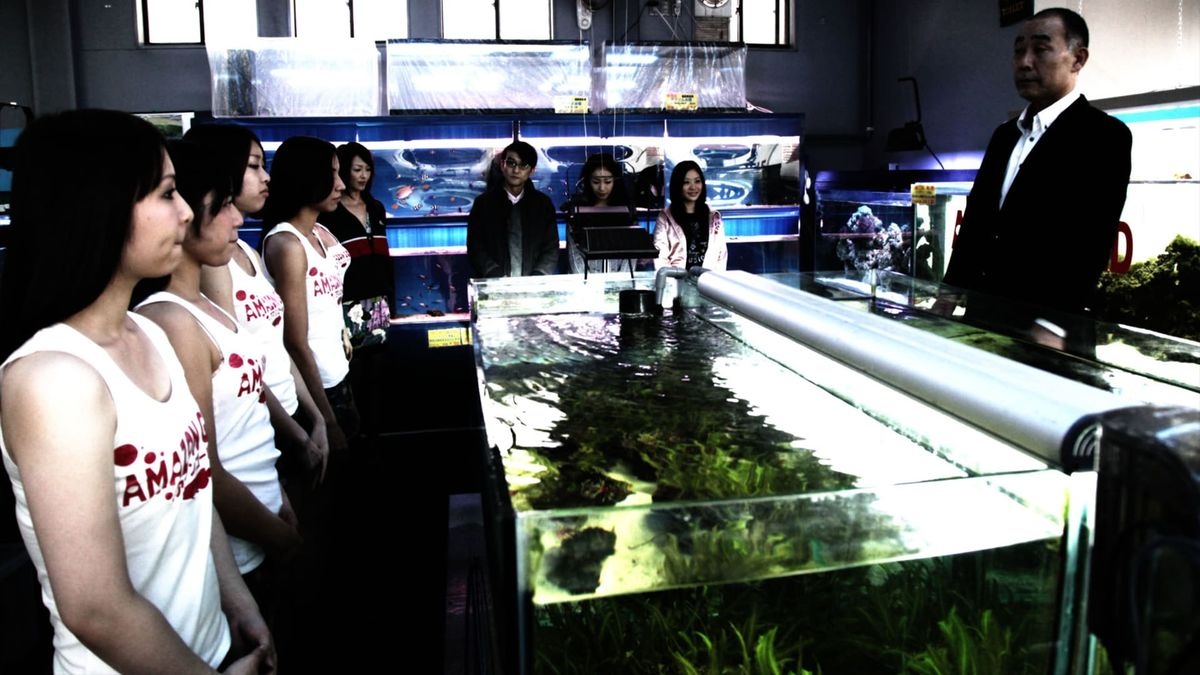 Cold Fish (2010) directed by Sion Sono • Reviews, film + cast • Letterboxd
