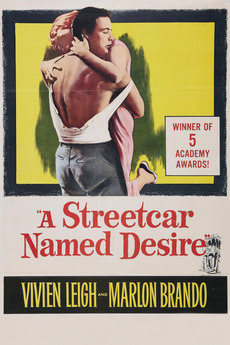 Essay streetcar named desire reality