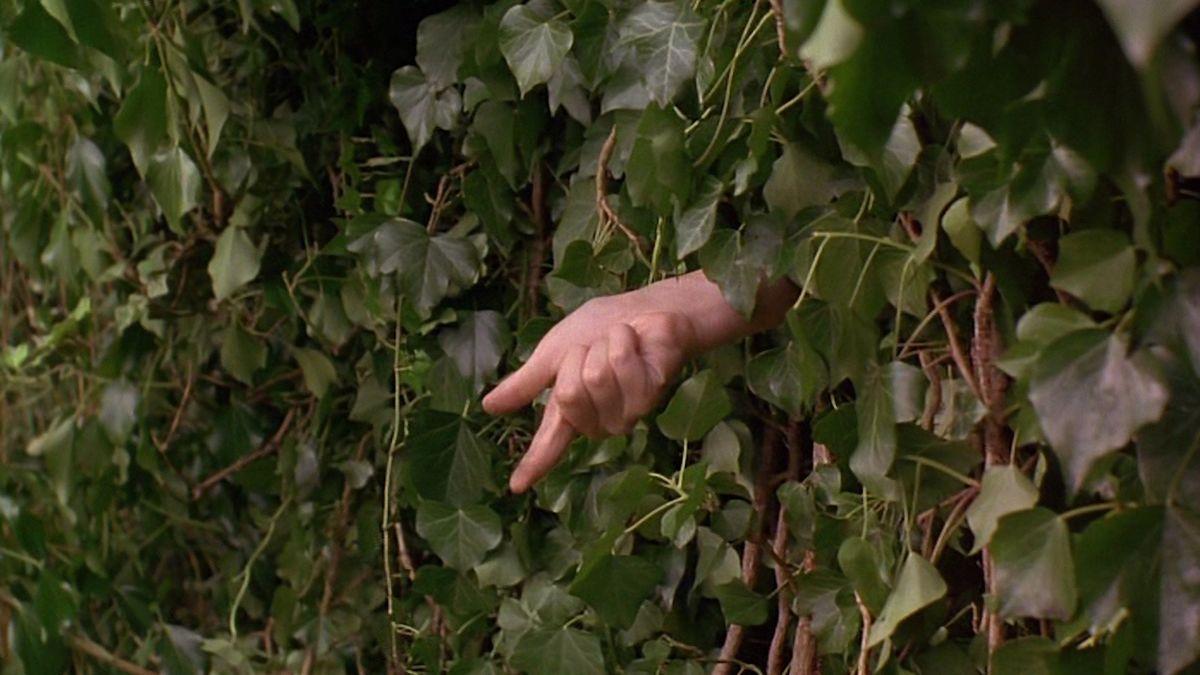 The Secret Garden (1993) directed by Agnieszka Holland • Reviews ...