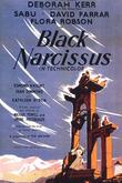 Black Narcissus
